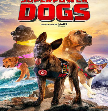 Arctic Dogs 2019 movie poster download